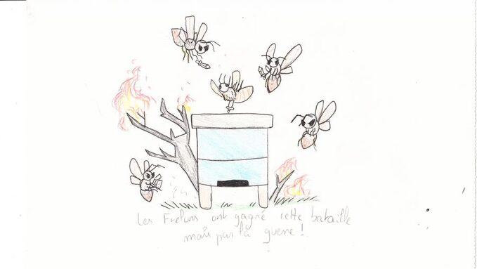 mort ruche.jpg
